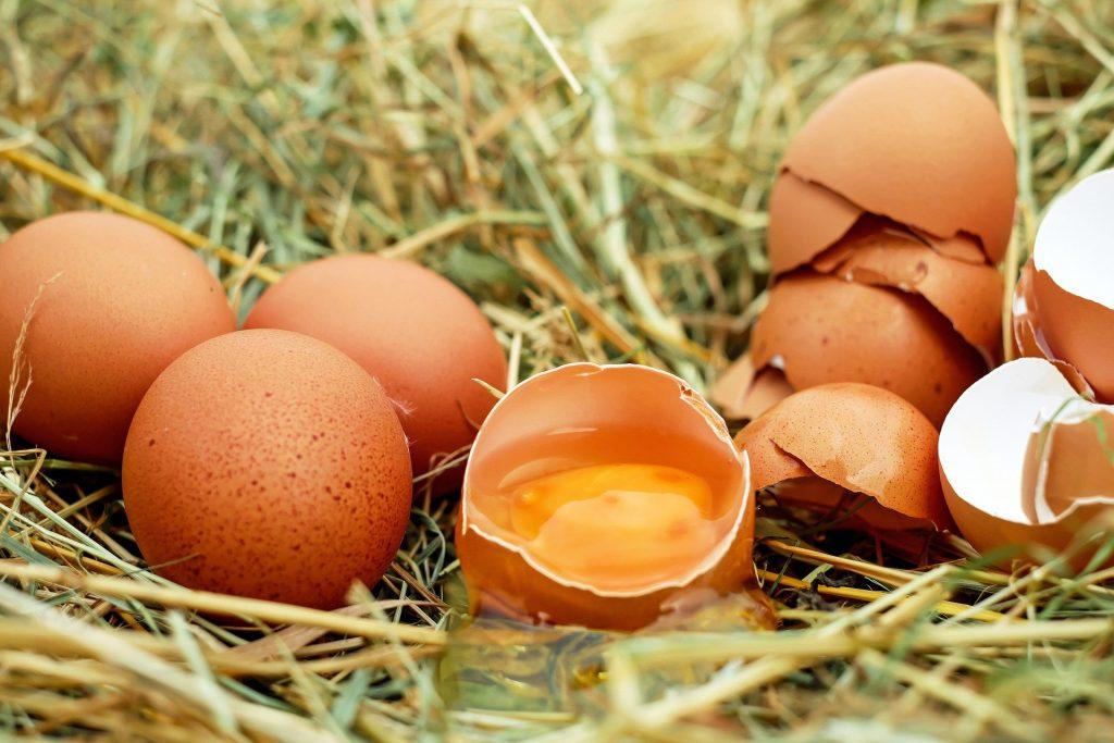 Jaune d'œuf enrichi en lutéine